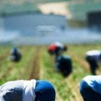 Latina, imprenditore agricolo non paga i braccianti e li travolge con la