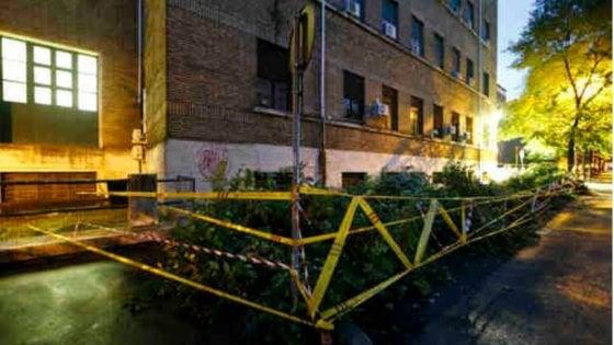 Maltempo a Roma, albero cade su auto: ferita una coppia