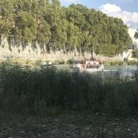 Roma, una piccola savana cresciuta accanto alla pista ciclabile sul Tevere