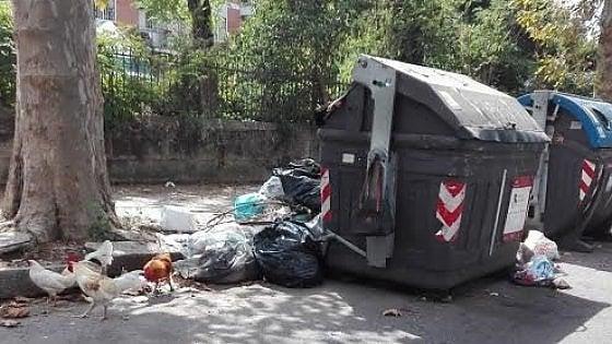 Immondizia, caos nella raccolta porta a porta: rivolta da Casal Palocco a Ostia. Il video dello slalom tra i rifiuti