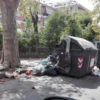 Immondizia, caos nella raccolta porta a porta: rivolta da Casal Palocco