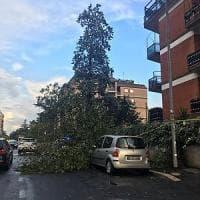 Nubifragio si abbatte su Roma: disagi alla circolazione, rami caduti e traffico
