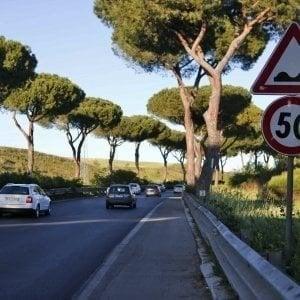 Roma, asfalto sollevato dai pini sulla Colombo: i lavori non prima di un anno