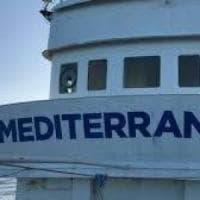 Mediterranea salpa a Spin Time Labs