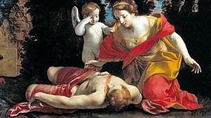 Amori, miti e altre storie         Ovidio alle Scuderie          foto