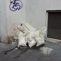 Quartiere Trieste, materiale di risulta e tronchi, quei marciapiedi ridotti a discariche