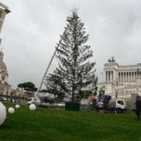 Spelacchio addio, arriva l'albero di Natale firmato Netflix da 376mila euro.