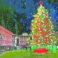 Roma, dopo Spelacchio arriva Spoiler: grande attesa per l' albero di Natale targato Netflix
