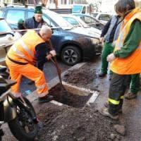 Roma, in Prati arrivano 63 nuovi alberi per sostituire quelli caduti
