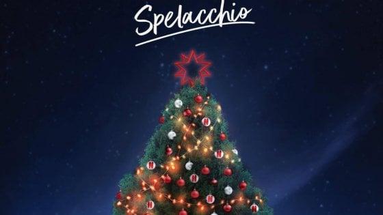 """""""Spelacchio is back"""" A Roma l'8 dicembre l'accensione dell'albero in Piazza Venezia"""