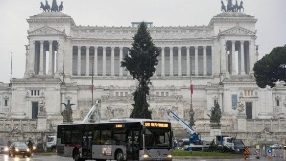 Spelacchio diventa #Spezzacchio, nel mirino dei social anche il nuovo albero di Natale del Campidoglio