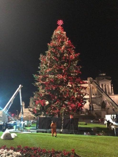 Roma, ultimato l'allestimento dell'albero di Natale targato Netflix a piazza Venezia. Ecco come sarà