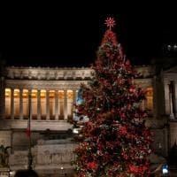 Roma, si accende l'albero di Natale di piazza Venezia