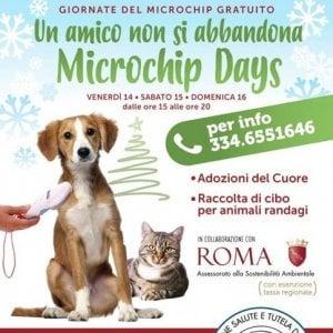 Roma, Tiburtina: giornata del microchip gratuito per gli amici a quattro zampe, dal 14 al 16 dicembre