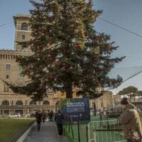Roma, Spelacchio senza pace: imbragato contro la caduta di decorazioni