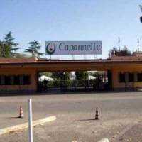 """Ippica a Roma, il gestore di Capannelle: """"Dal 2019 stop alle corse"""""""