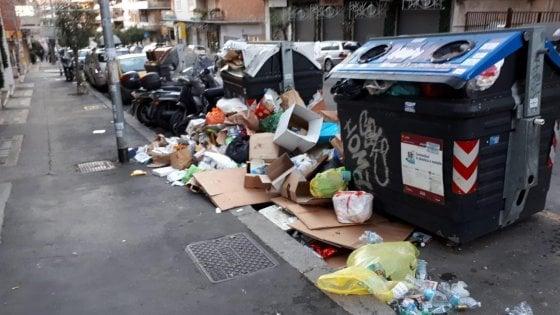 """Rifiuti, l'idea del Campidoglio: """"Volontari ai cassonetti per multare chi sporca"""""""