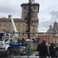 Albero Di Natale Roma 2019.Albero Di Natale La Repubblica It
