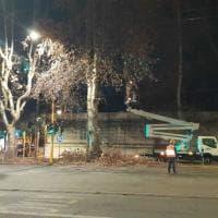 Roma, albero pericolante sulla Nomentana: area chiusa al traffico