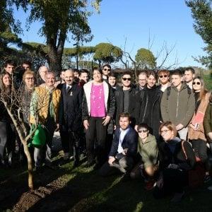 Un albero per la vita, alla Luiss un melograno per combattere il cancro infantile