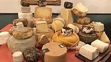 Festival dei formaggi rari al WeGil di Trastevere