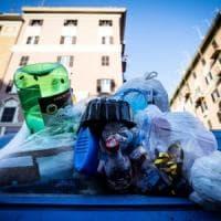 Roma, carcassa di topo da giorni davanti a scuola.