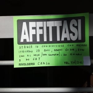 "Roma, San Lorenzo, ""Non si affitta ad animali o gay"". Sindaca Raggi indignata ma la notizia sarebbe falsa"