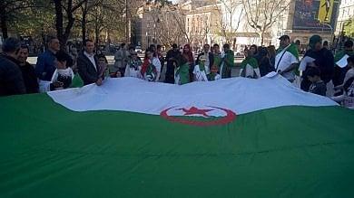 """Gli algerini d'Italia scendono in piazza """"Il governo di Algeri deve cambiare""""  Foto"""