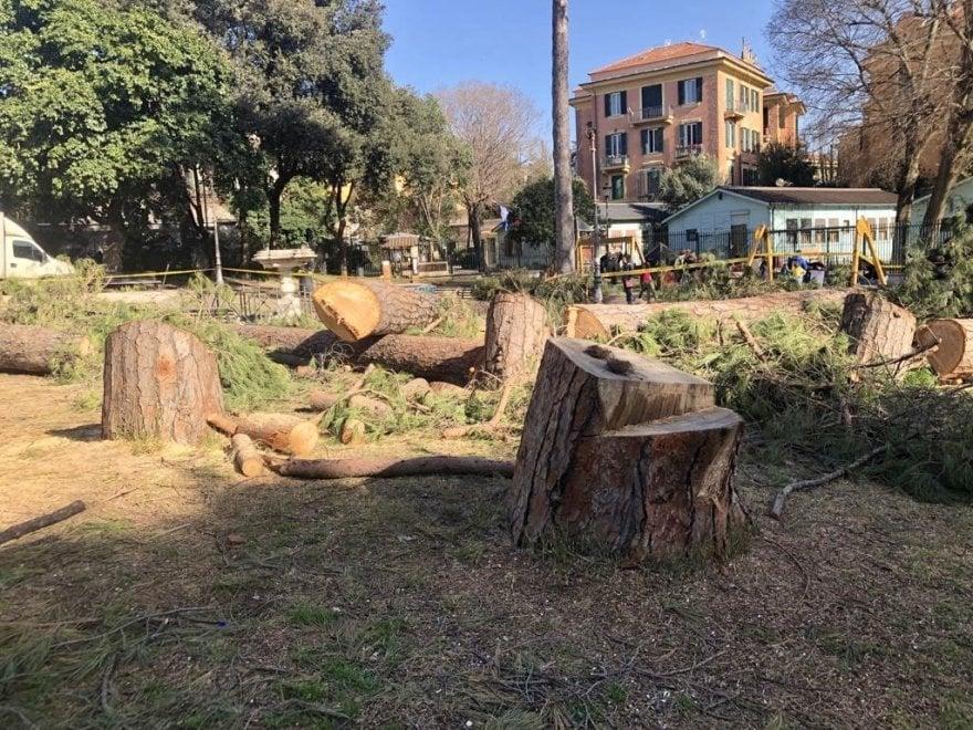 """Alberi e rami abbattuti a causa del maltempo: """"Villa Paganini è una giungla pericolosa"""""""