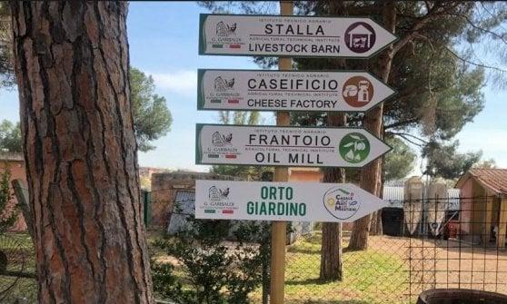 """Roma, nasce il Casale per i ragazzi autistici: """"Insieme per imparare il lavoro di agricoltori"""""""