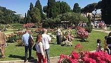 Roma, riapre il Roseto comunale: oltre 1000 esemplari da tutto il mondo