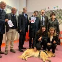 Lazio, cani e gatti in corsia: all'ospedale dei Castelli si può