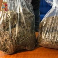 Roma, utilizzava l'aglio per mascherare l'odore di marijuana: arrestata