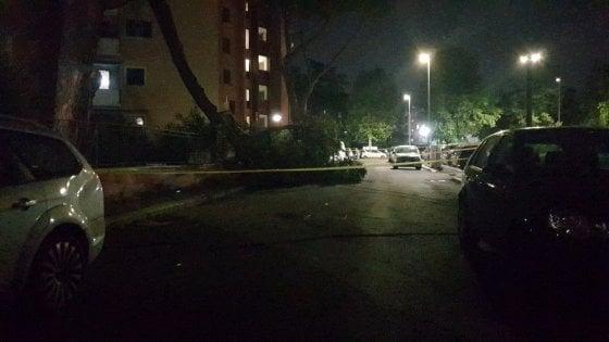 Roma, crollato albero a San Basilio nella  strada già al buio. Nessun ferito