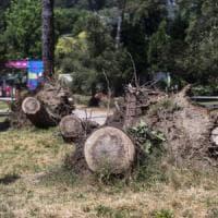Roma, giunta Raggi: tre anni nel baratro senza neppure capire le emergenze