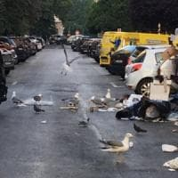 Emergenza rifiuti, Roma Sud si ribella: