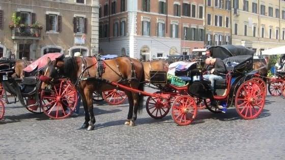 """Roma, via libera alle """"botticelle"""" anche con il gran caldo. Il Tar accoglie le richieste dei vetturini"""