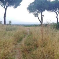 Roma, grazie ai cittadini al via lo sfalcio del parco di Volusia