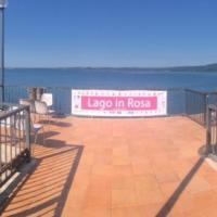 """""""Lago in Rosa"""" a Trevignano, sfilata di donne contro il tumore"""