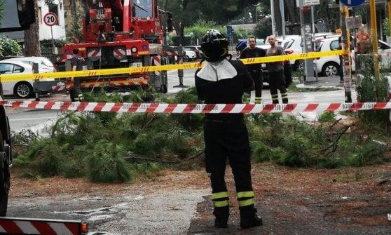 Temporale su Roma: alberi caduti e allagamenti