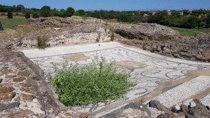 Sull'Appia Antica crescono solo erbacce