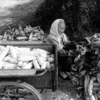 Roma, l'amore per gli anziani in  Cina: una mostra e un libro