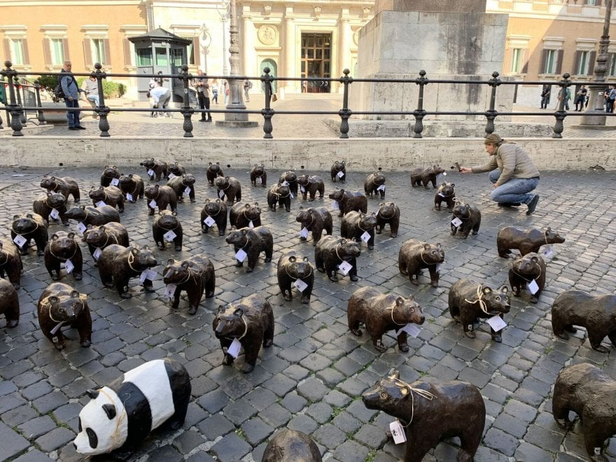 Roma, 50 orsi marsicani di cartapesta a Montecitorio: la manifestazione del Wwf