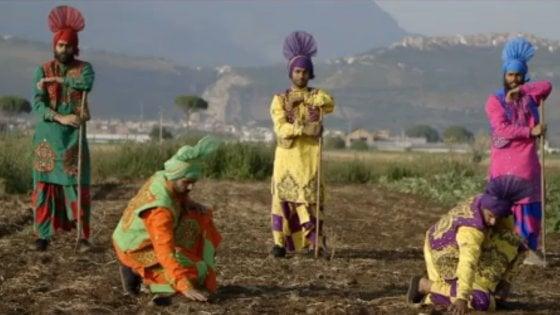 Arriva The Harvest, il docu-musical sui sikh che faticano nell'Agro Pontino