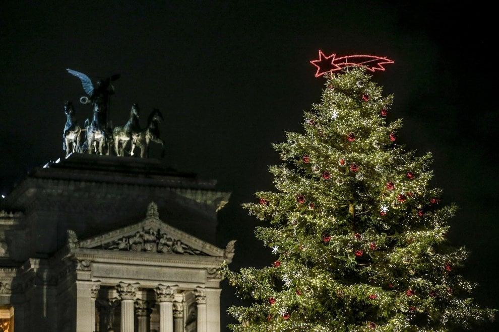 Il ritorno di Spelacchio: si accende l'albero di piazza Venezia