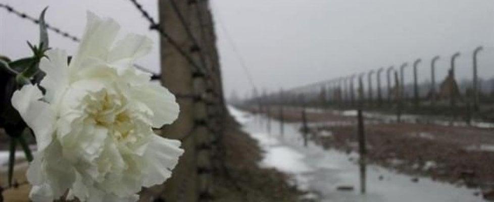 """Civita Castellana, la giunta leghista taglia i viaggi ad Auschwitz: rivolta di prof e studenti. Zingaretti: """"Paghiamo noi"""""""