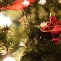 Ad Antrodoco e Alatri già si respira l'aria del Natale