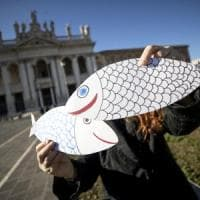 """Sardine a Roma, Casapound: """"Non saremo a San Giovanni, è solo una piazza contro"""""""
