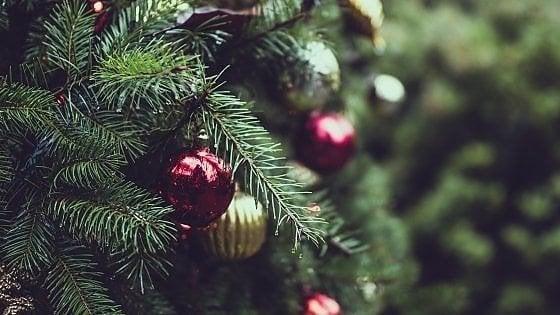 Alberi di Natale, ecco dove portarli a Roma