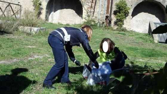 Villa Pamphilj, Cedro non ce l'ha fatta: morta la volpe investita e soccorsa a Roma